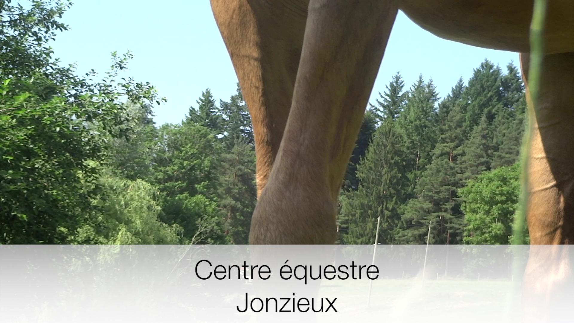 Présentation Centre Equestre de la Tourette